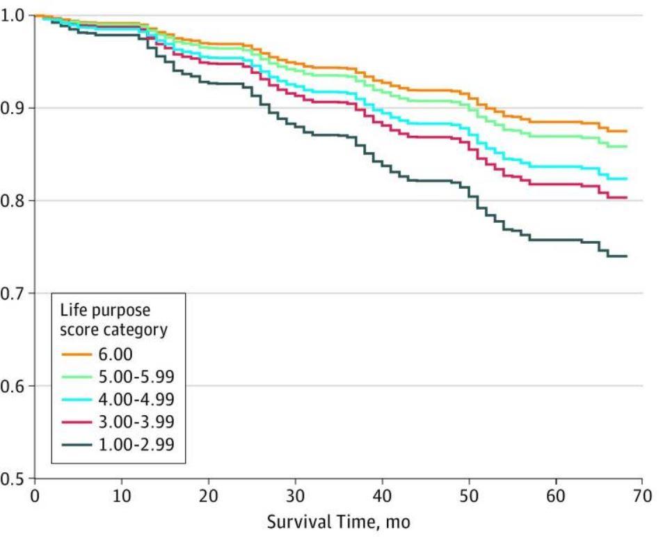 Graph - life purpose vs mortality